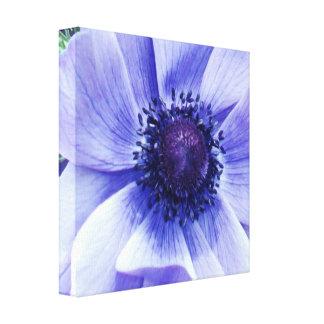 Toile Fleur de pavot bleu,