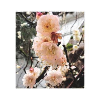 Toile Fleur de pluie