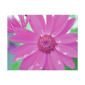 Toile Fleur en gros plan vibrante de rose de photo sur