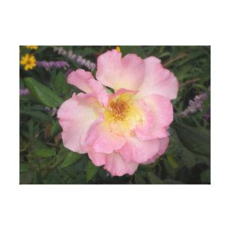 Toile Fleur rose de l'Arizona
