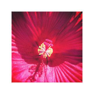 Toile Fleur rouge vive