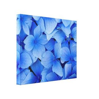 Toile Fleurs bleues d'hortensia