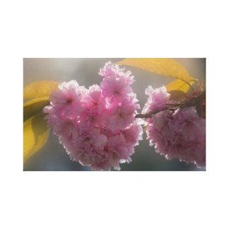 Toile Fleurs de cerisier