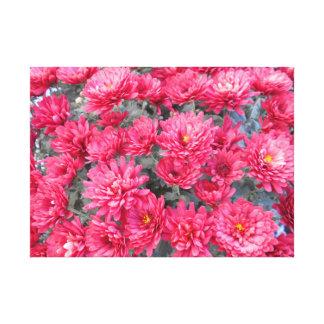 Toile Fleurs rouges de chrysanthème