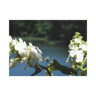 Toile Fleurs sur le lac