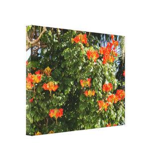 Toile Fleurs tropicales d'orange de l'arbre |