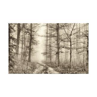 Toile Forêt de B&W avec le brouillard de matin derrière