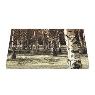 Toile Forêt de bouleau