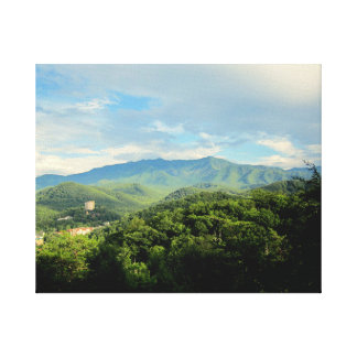Toile Gaitlanburg Tennessee