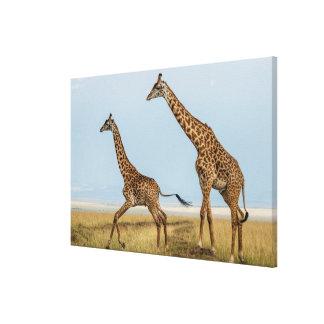 Toile Girafe et jeune fonctionnement