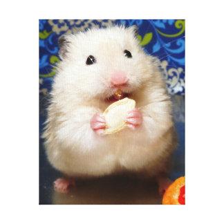 Toile Hamster syrien pelucheux Kokolinka mangeant une gr