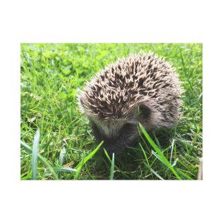 Toile hedgehog painting