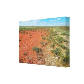 Toile Herbe orange dans la steppe