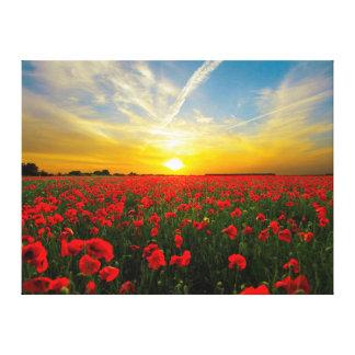 Toile Horizon merveilleux de coucher du soleil de champ