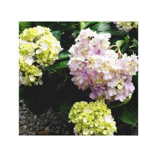 Toile Hortensia blanc et rose
