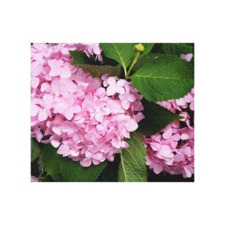 Toile Hortensia rose