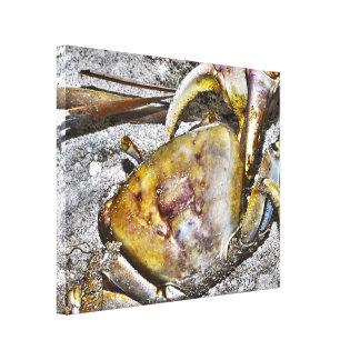 Toile imprimée : Crabe de Martinique