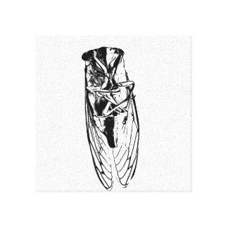 Toile insecte