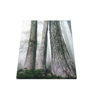 Toile Invocation de la forêt