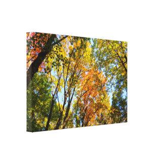 Toile Jeunes arbres colorés