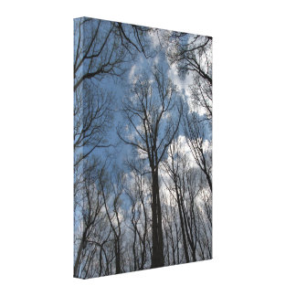 Toile Joli ciel bleu nuageux d'arbres de peuplier de