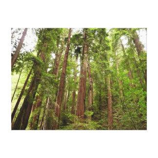 Toile Jusqu'aux séquoias au monument national en bois de