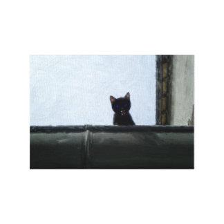 Toile Kitten on roof