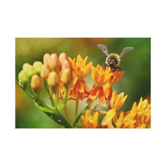 TOILE LA NATURE ADMIRABLE D'IMAGES BEE&FLIGHT