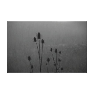 Toile La nature de photographie de Patterns4Nature