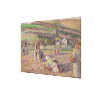 Toile La récolte de pomme de terre