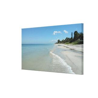 Toile La scène tropicale de plage a étiré la copie de