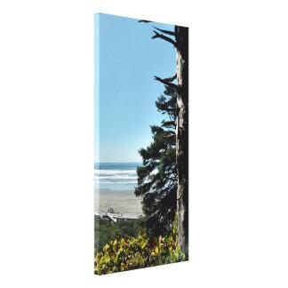 Toile La vue d'océan balayée par le vent d'arbre a