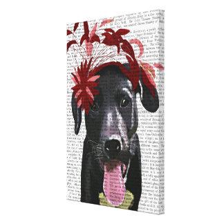 Toile Labrador noir avec Fascinator rouge