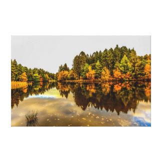 Toile Lac pike de canards