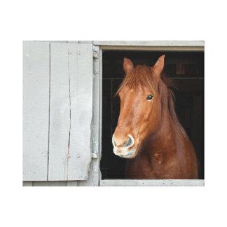 Toile Le cheval quart de châtaigne attendant pour être a
