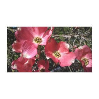 Toile Le cornouiller rose s'est entièrement ouvert le