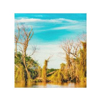Toile Le fleuve Parana, San Nicolas, Argentine