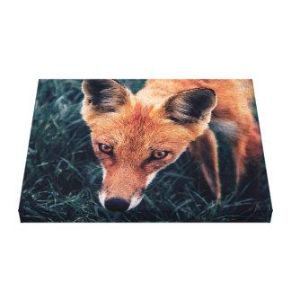 Toile Le Fox rouge