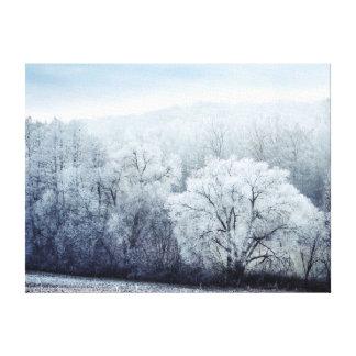 Toile Le paysage brumeux d'hiver avec la neige a couvert