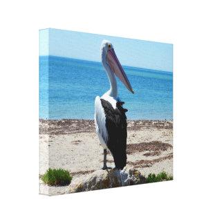 Toile Le pélican sur la roche de plage, les jeux affamés