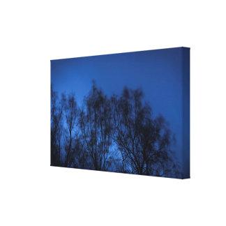 Toile Le vent et les arbres