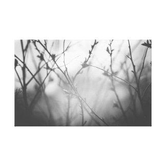Toile Les branches contre le ciel