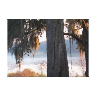 Toile Lever de soleil sur un petit lac brumeux dans les