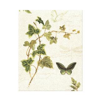 Toile Lierres et papillons