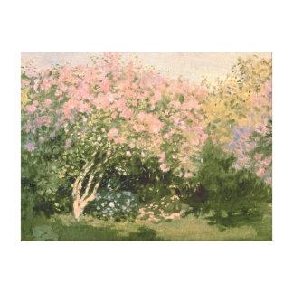 Toile Lilas de Claude Monet | au soleil, 1873
