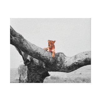 Toile Lion se reposant dans un arbre