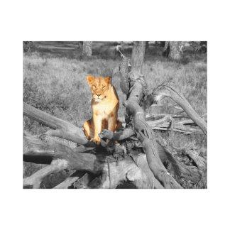 Toile Lion sur un tronc d'arbre