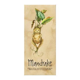 """Toile Mandragore magique de plantes 2 20,24"""" x 45,36"""""""