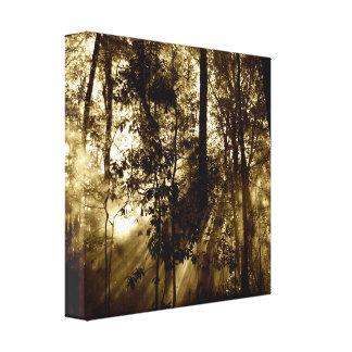 Toile Matin dans la forêt