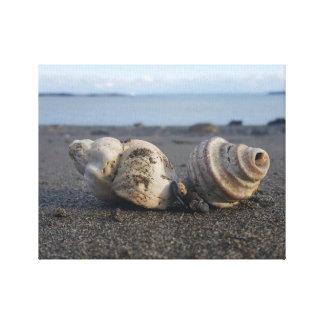 Toile Mer Shell sur le bord de la mer